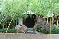 I mokrý bambus má své osobité kouzlo ...