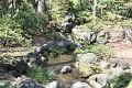 Nebo třeba jak si vyhrají s potokem, jen stěží poznáte, že je uměle vytvořený, dokonalá kopie přírody ...