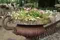 V Holansku se osází květy úplně vše ...