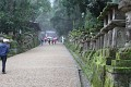 Cestu k Velké svatyni Kasuga lemuje více než 3000 lamp ...