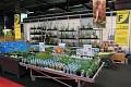 Pro Vaše jezírko zde můžete koupit snad vše  - od vodních rostlin  ...