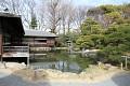 Ačkoliv je zimní období - momentky z japonské zahrady jsou přinejmenším oku lahodící ...