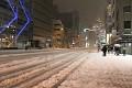Toto nejsou obrázky ze zimních vysokohorských středisek - toto je Tokyo 8.2. 2014 - tolik sněhu tu nepamatují již 25let a pořád hustě sněží ...