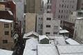 Ale co to vidím, Tokyo je pokryto sněhovým popraškem - počasí je tu opravdu velmi proměnlivé ...