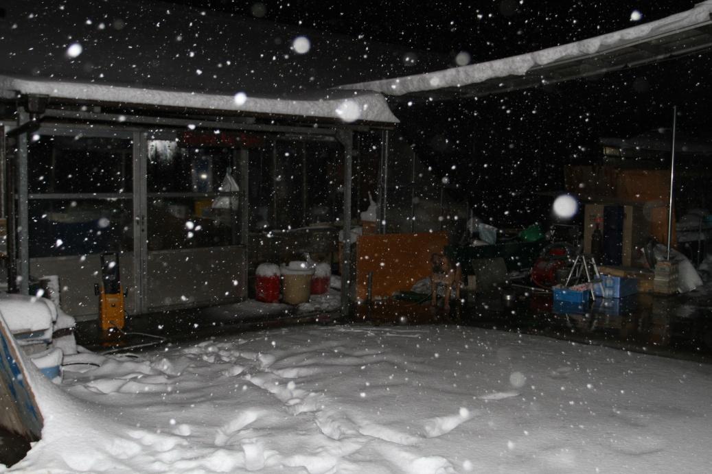 Loučíme se s Minuma KOI Farm, zasypanou sněhem ...