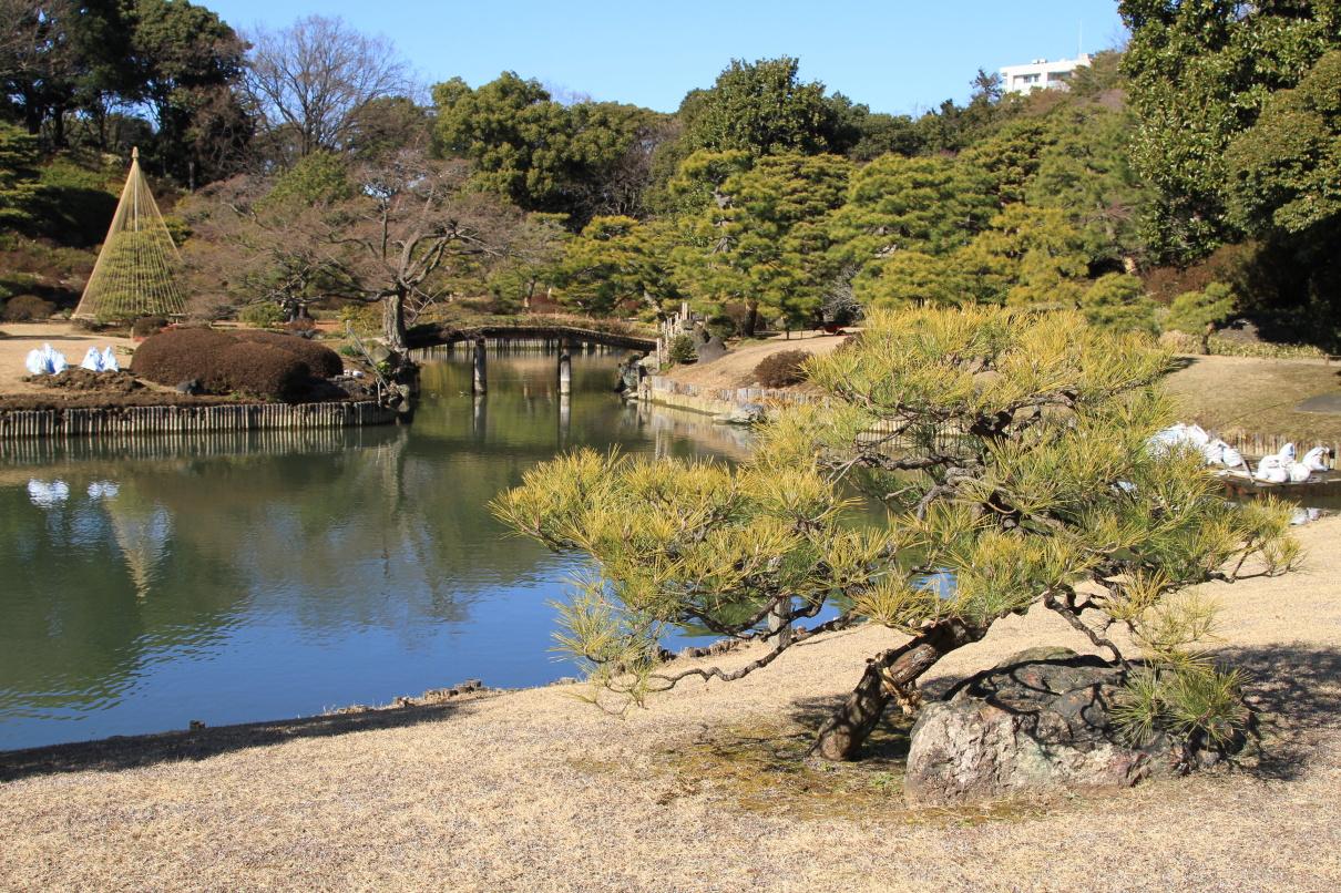 Rikugien Gardens - krása japonských zahrad ...