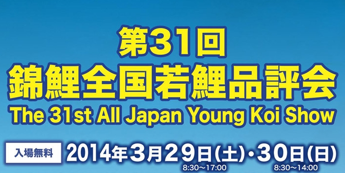All Japan Young Koi Show 2014