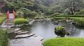Tady neni co říci, stačí se jen kochat krásou japonských vodních zahrad...