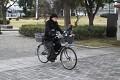 I na kole se dá pohodlně jezdit, páníček Vás vozí ...