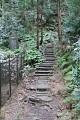 No ovšem pokud se Vám ve městě nelíbí, Japonci moc rádi vyráží na výlety do přírody ...