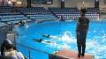 Při vystoupení delfínů není dobré sedět moc blízko, jistě by o tom mohli pohovořit Ti dva prcci, kteří byli i přes pláštěnky dost mokří...