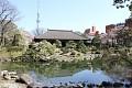A odsud to také nevypadá zle - japonské zahrady jsou plné zajímavých scenérií a úhlů pohledů ...