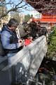 No vidíte, jen vidí kapra a hned se všichni zastavují fotí a fotí - NishikiGoi jsou velmi populární a patří do každé vodní zahrady ...