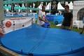 Kapříci jsou bezpečně ve výstavních bazéncích - dobrou a je čas se jet někam uložit a trochu zrelaxovat po dlouhém dni ...