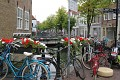 Holandsko bez květin si nelze představit - jsou všudypřítomné - nikdo je netrhá/nekrade do svých zahrad - všichni z nich mají radost ...