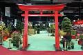 Bonsaje - bez těch se japonská zahrada nemůže obejít ...