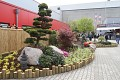 Ukázky zahrad v japonském stylu nesmí chybět ...