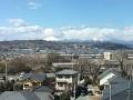 Japonsko nás dnes přivítalo nádherným jarním počasím, slunečno 16C ...