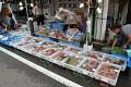Můžete si pořídit rybičku, kapříka či želvu? Pet Shop on the street ...