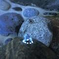 Světlo pro osvětlení pramenitých kamenů Oase LunaLed 6 s