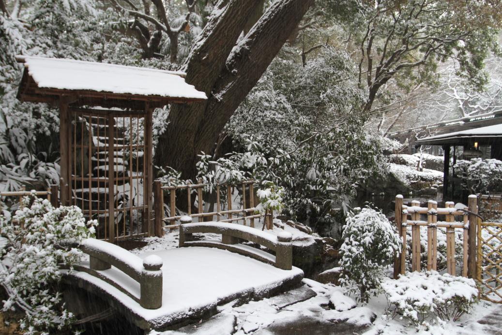 Zimní krása japonských zahrad ...