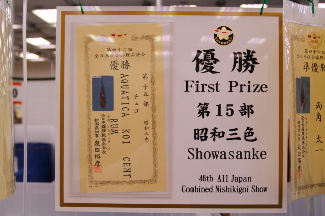 Aquatica KOI centrum slaví v Japonsku opět velké úspěchy...