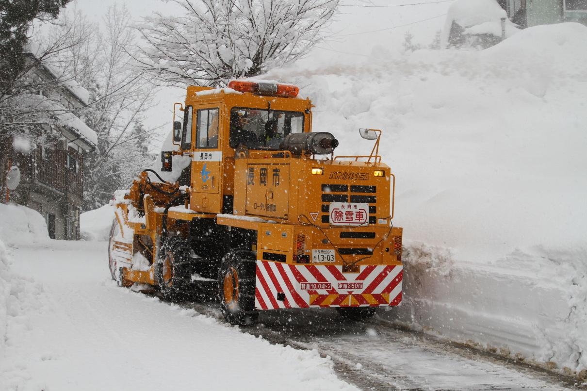 Nagaoka KOI winter 2016 ...