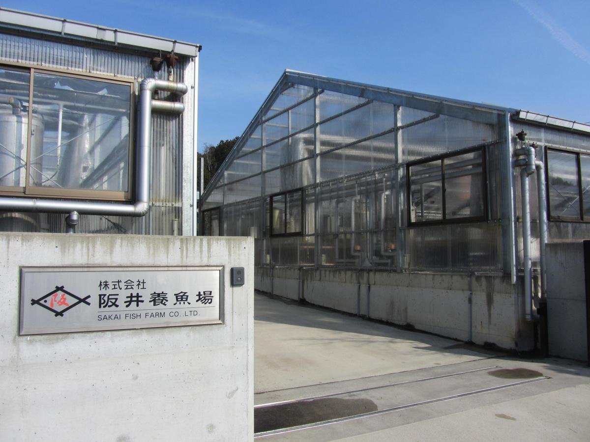 Hlavní budova Sakai Fish Farm - zde je ukryto rodinné zlato - chovní KOI