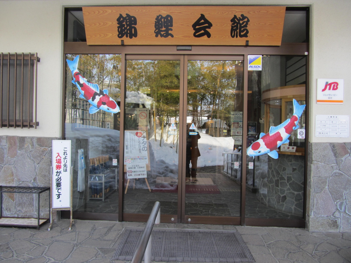 Museum of Nishikigoi