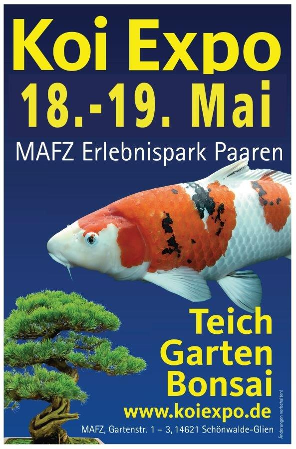 Germany Shinkokai Young KOI Show 2019
