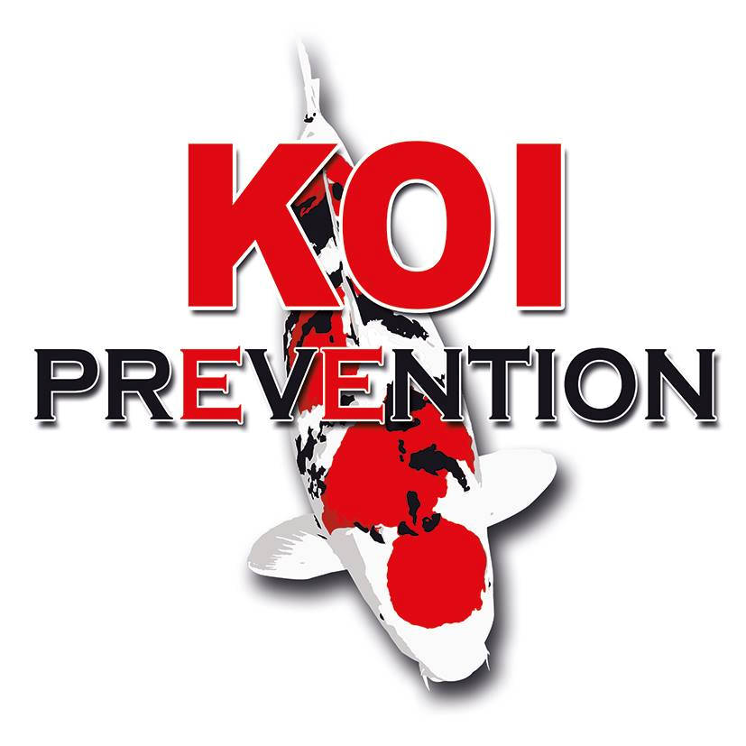Krmivo KOI Prevention