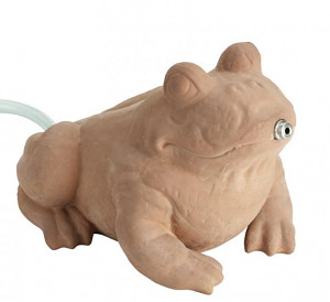FIAP Deco Active Frog