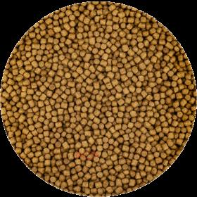 KOI Wheat Germ