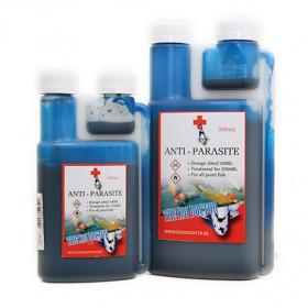 Anti - Parasite
